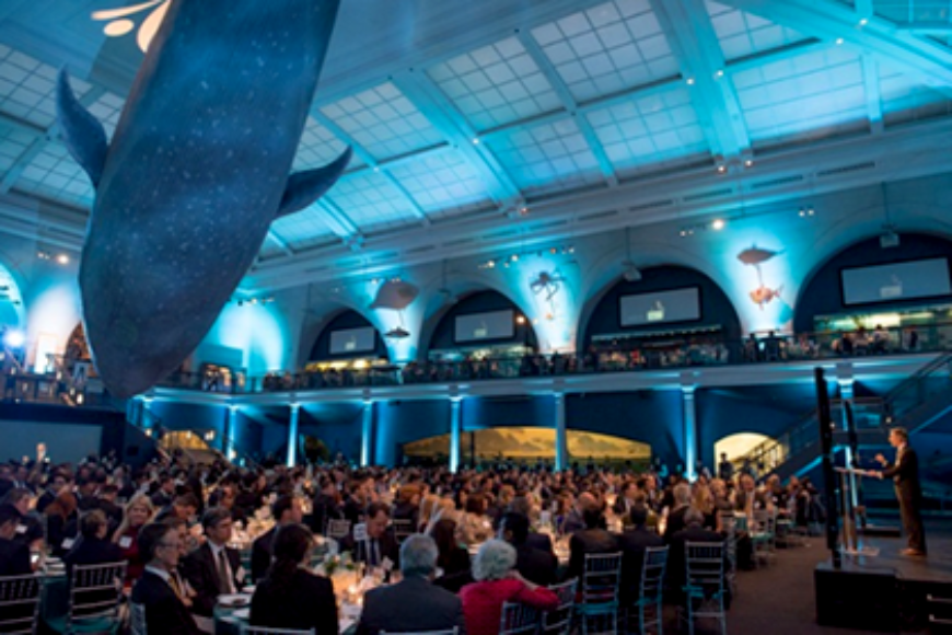 TINA'S WISH BENEFIT RAISES US$1.4M FOR EARLY DETECTION OVARIAN CANCER RESEARCH