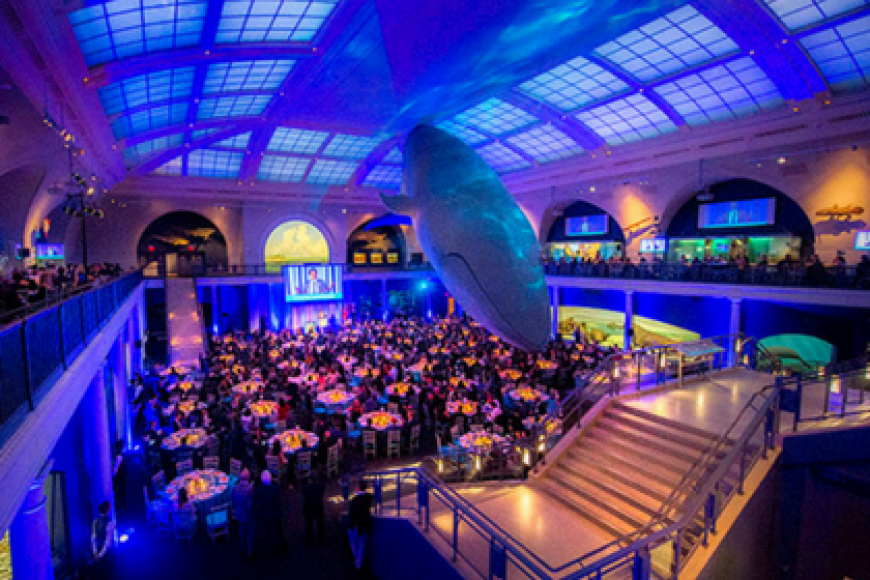 TINA'S WISH RAISES $1.6M FOR OVARIAN CANCER RESEARCH AND CELEBRATES ITS 10TH ANNIVERSARY AT THE AMERICAN MUSEUM OF NATURAL HISTORY
